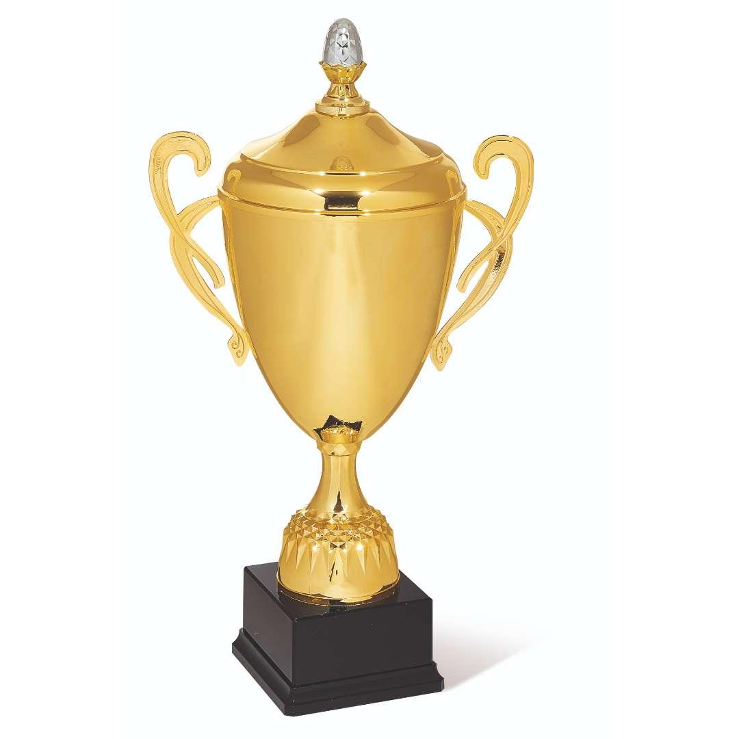 Pokal 203