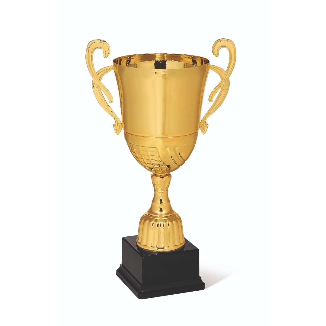 Pokal 220 U2013 BallPokal